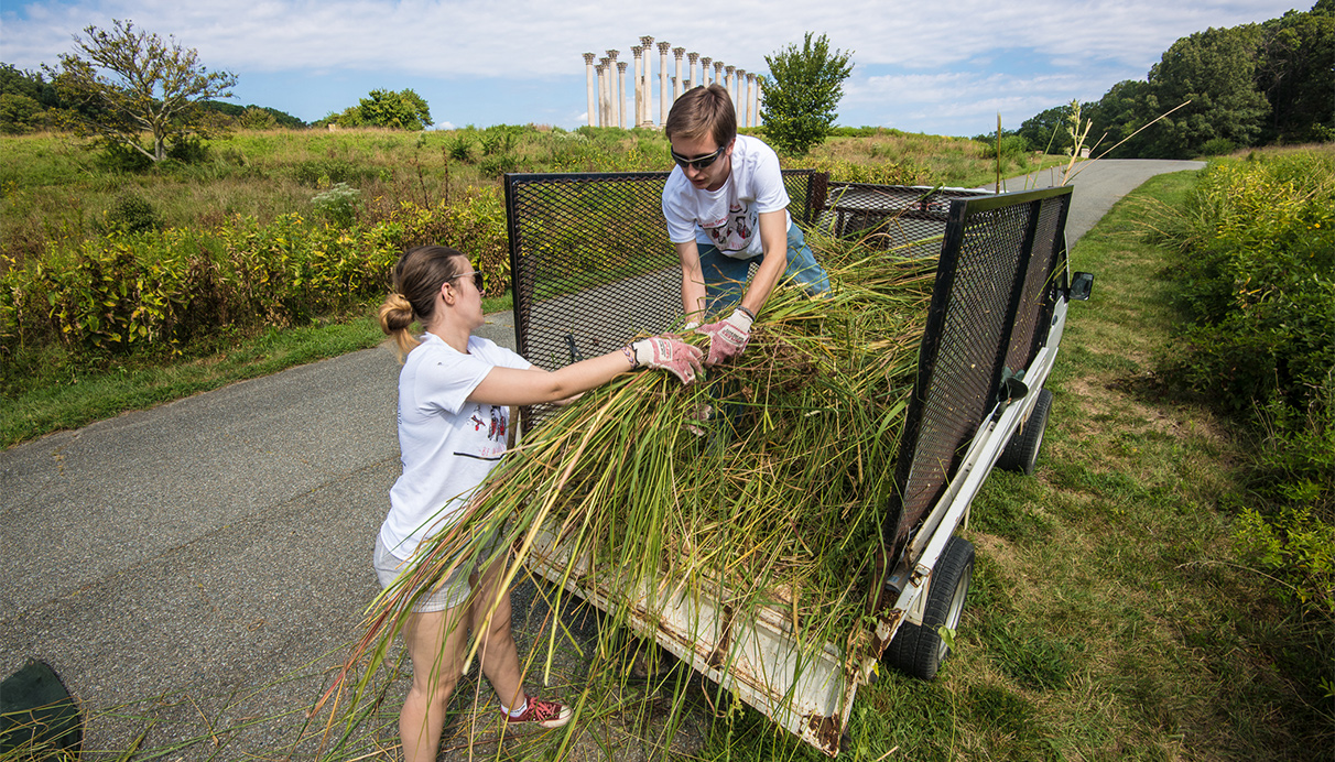 Students participate in a community service project