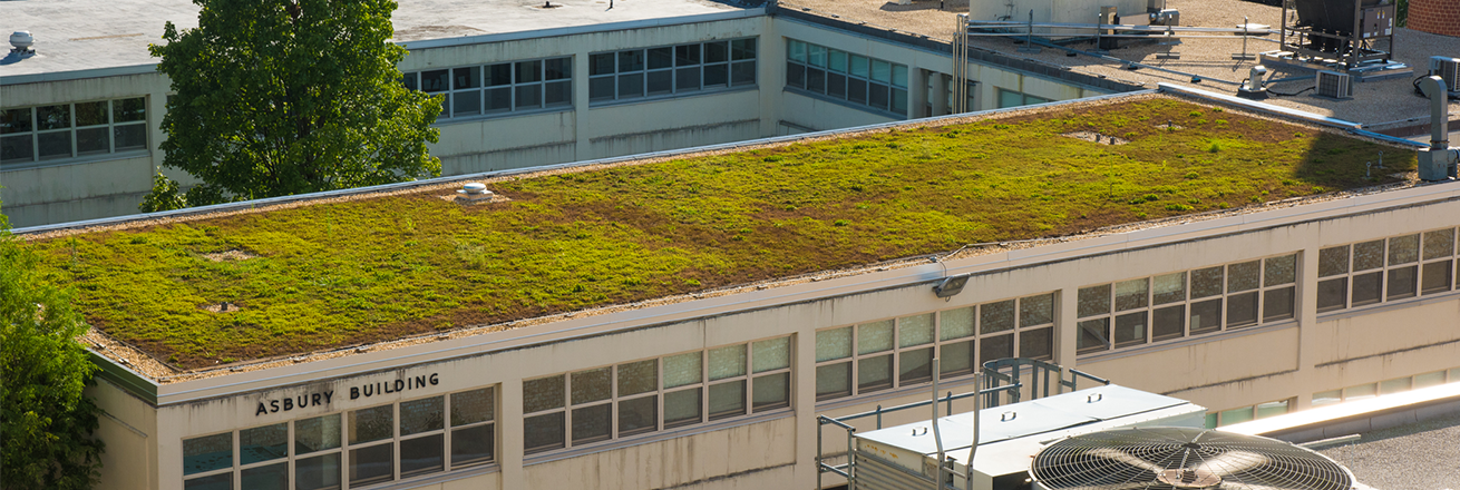 Asbury Green Roof