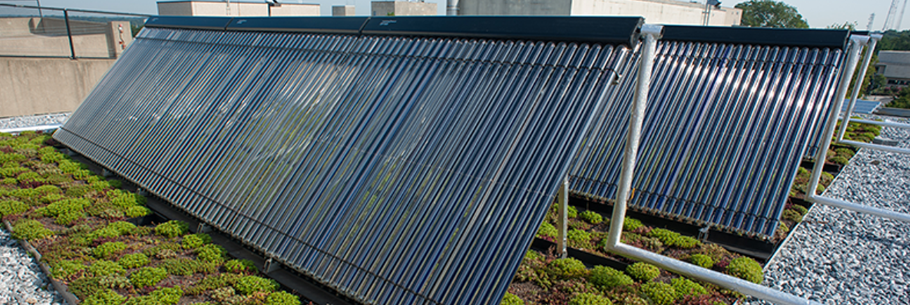 Solar panels with green roof
