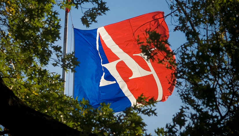 AU Flag among trees