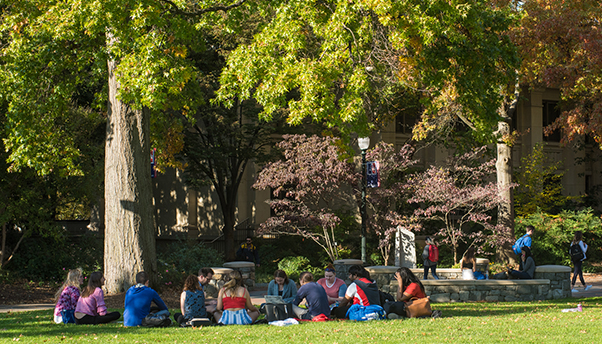 Students Study in Circle on Quad