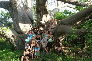 Students at the base of large Baobab tree