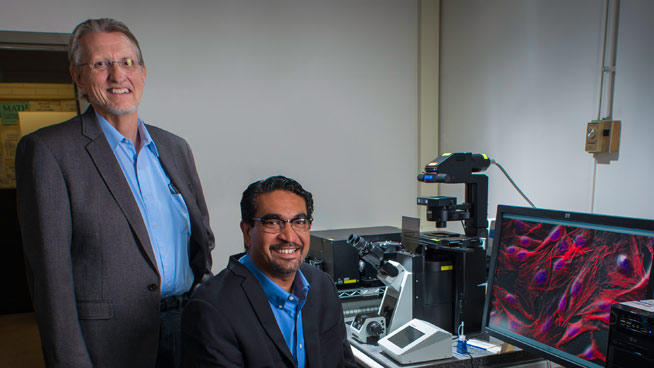 Terry Davidson and Colin Saldanha Lead Neuroscience Research at AU