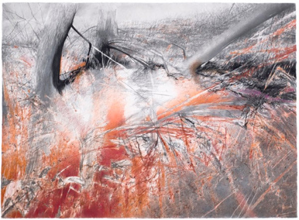 Thin lines and scratches of red, orange, grey, and black converge in branchlike shapes.