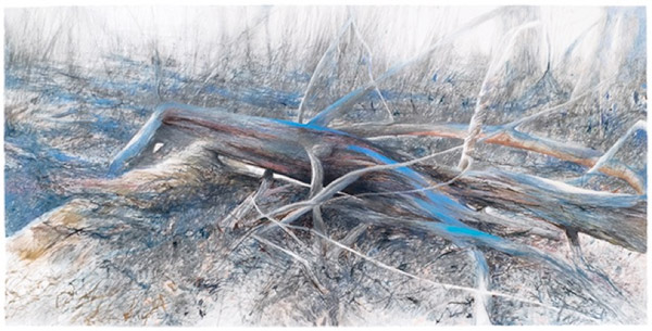 Thin grey, blue, and red lines converge in long, thin, branchlike shapes.