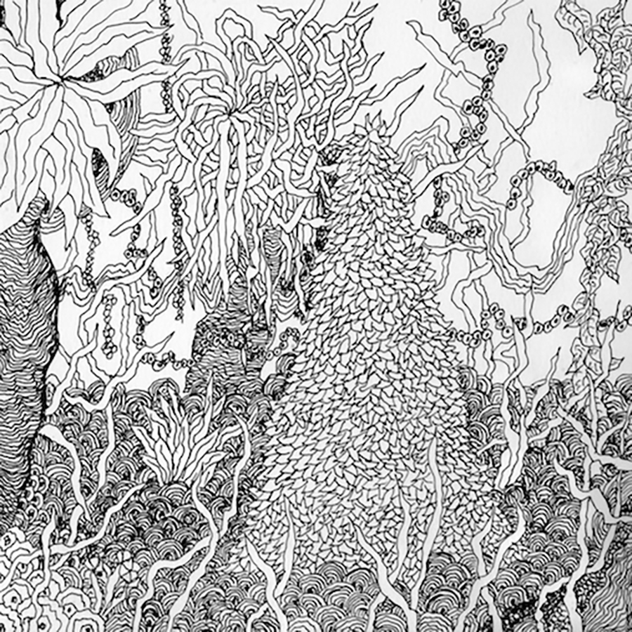 Black and white sketch of foliage