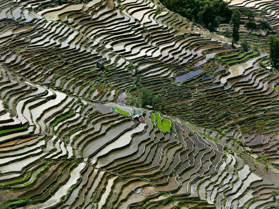 Edward Burtynsky, Rice Terraces #3a, Western Yunnan Province, China, 2012