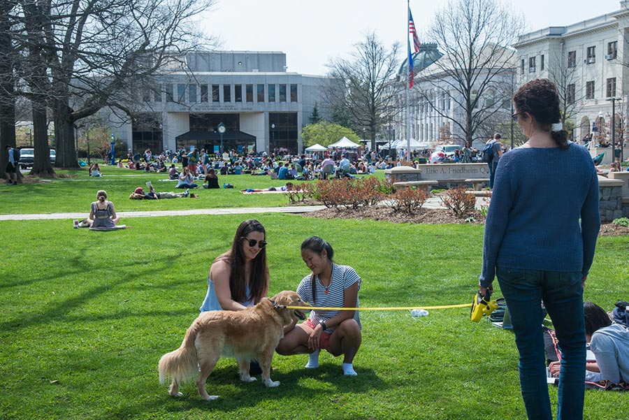 Students pet a leashed dog on campus, with the Bender library in the background