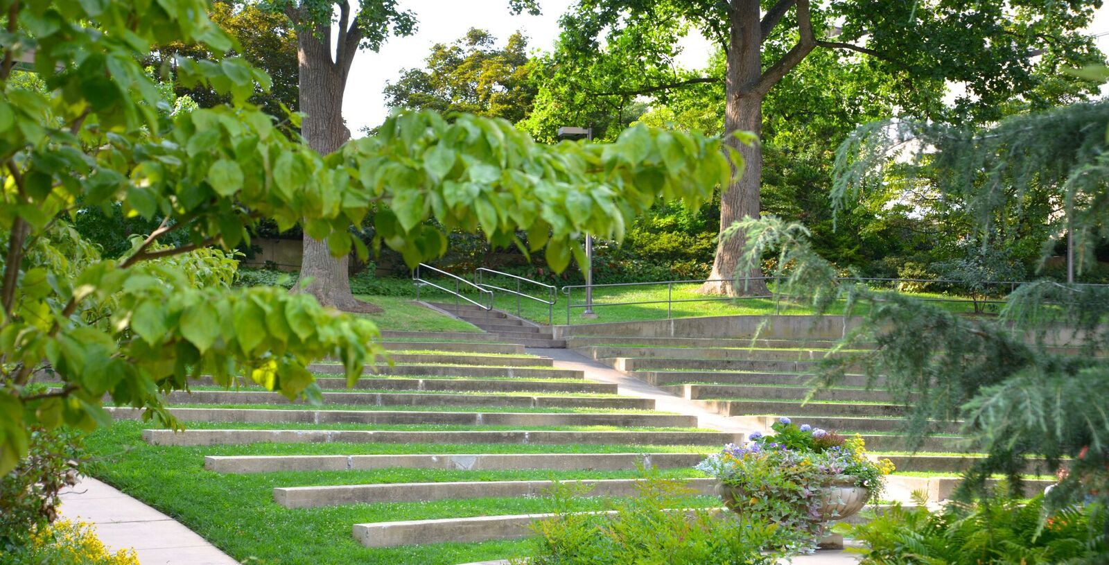 Woods Brown Amphitheatre