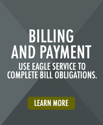 Use EagleService to complete student bill obligations