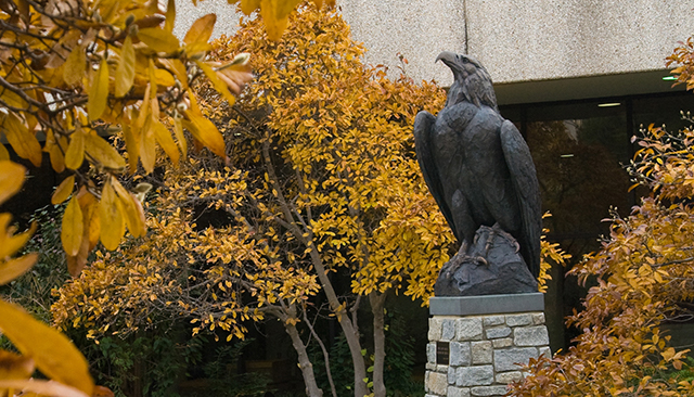 Eagle statue in the fall.