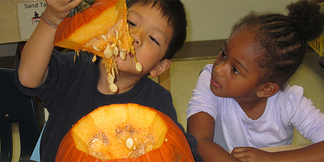 Two children looking at a pumpkin