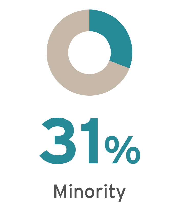 Minority Student Percentage of 2016 MBA Class is 31%