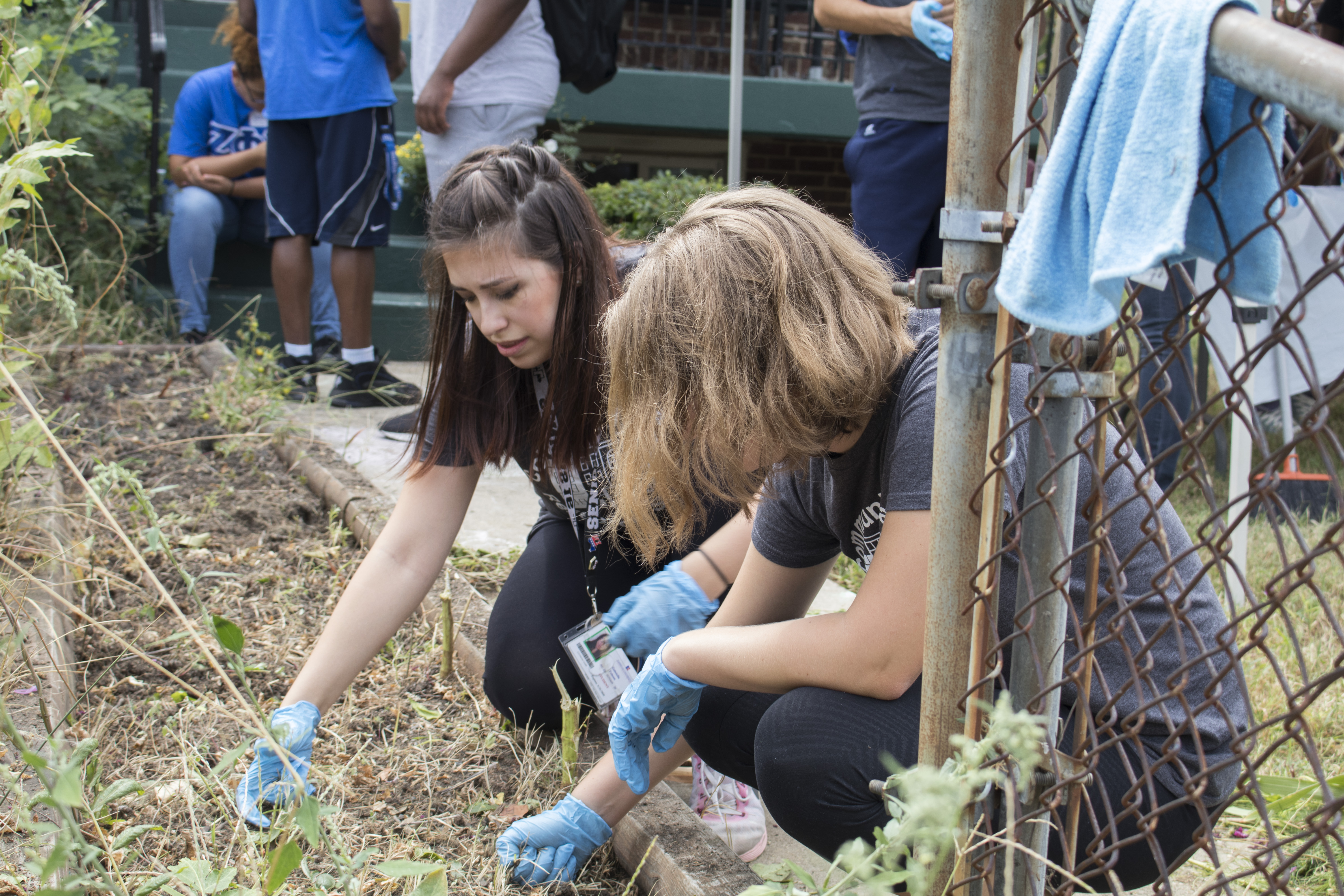 CBRS students volunteering at UPO Community Day in September 2016