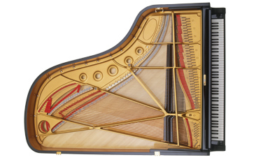 diagram of the inside of a piano