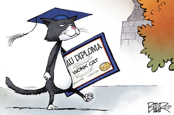 wonk cat carrying a diploma