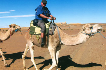 David Pattison riding a camel