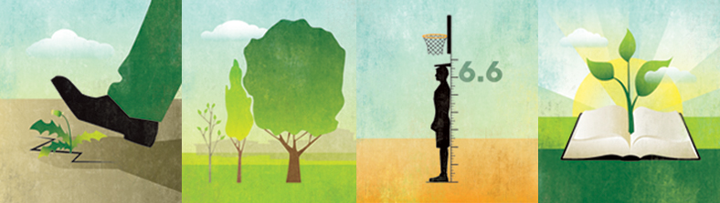 illustrations of trees, a bible, a basketball player, and a foot stepping on weeds in a crack