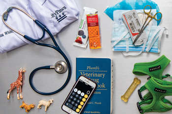 A lab coat and stethoscope; crackers; surgical equipment; a passport; needles and blood tubes; Patriot League championship rings; a canine toothbrush; animal figurines; Drug handbook; dog treats; bike lock and helmet