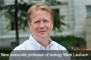American Univeristy associate professor of biology Mark Laubach.