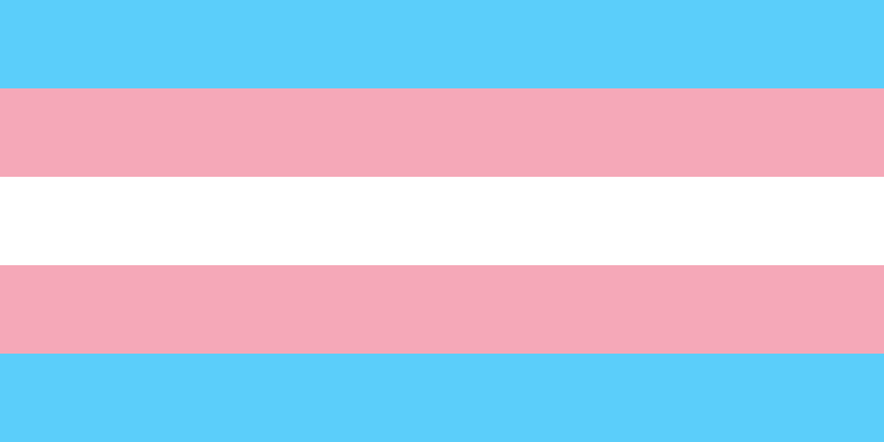 Trans* Resource Guide