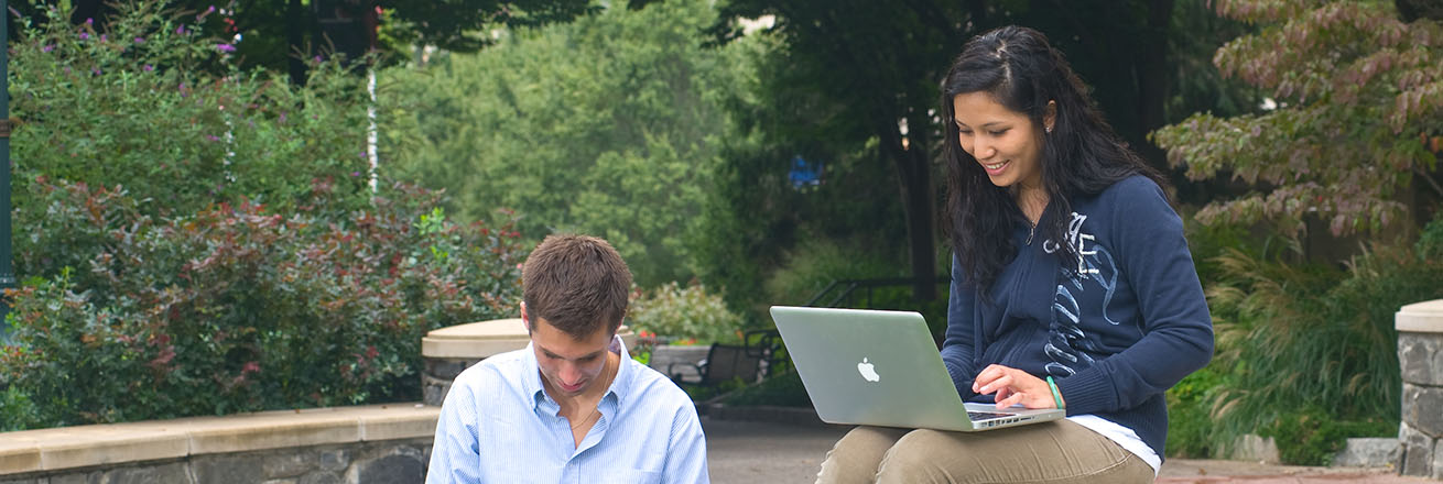 Students using laptops on the Quad