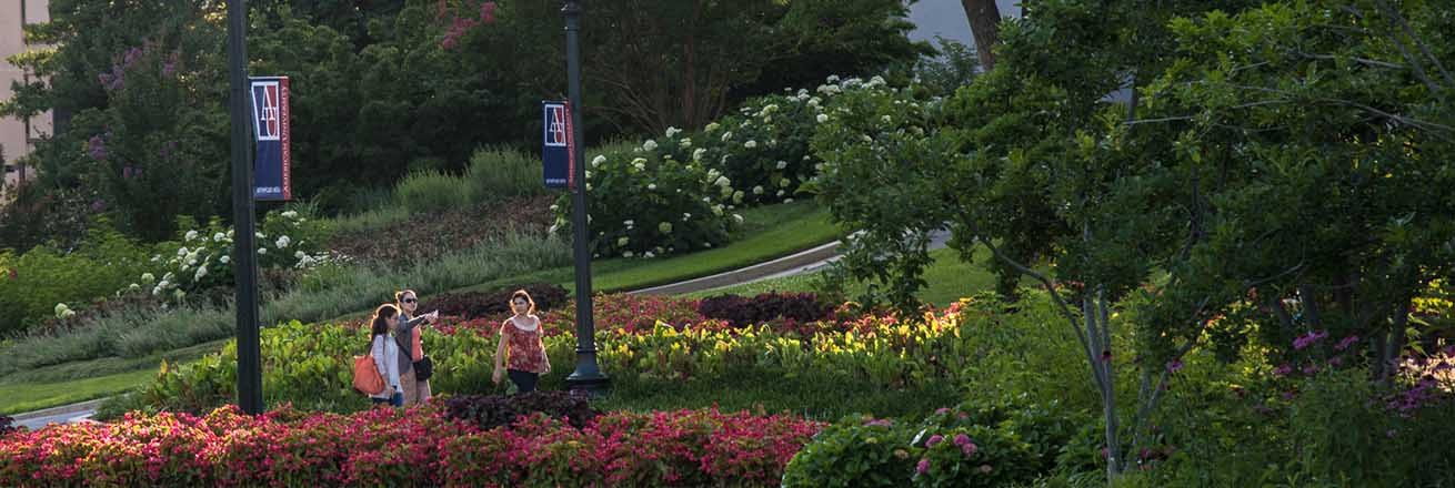 The American University campus green