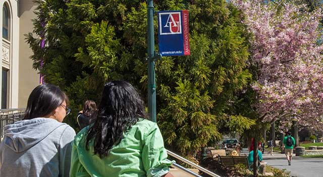 An American University pennant against a backdrop of cherry blossoms