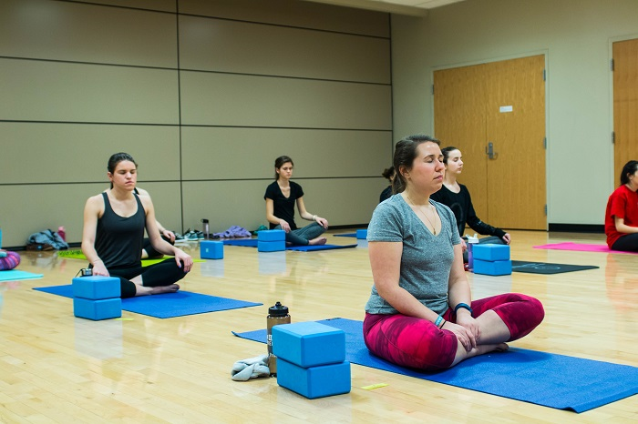 Yoga Class Participants in Mediation