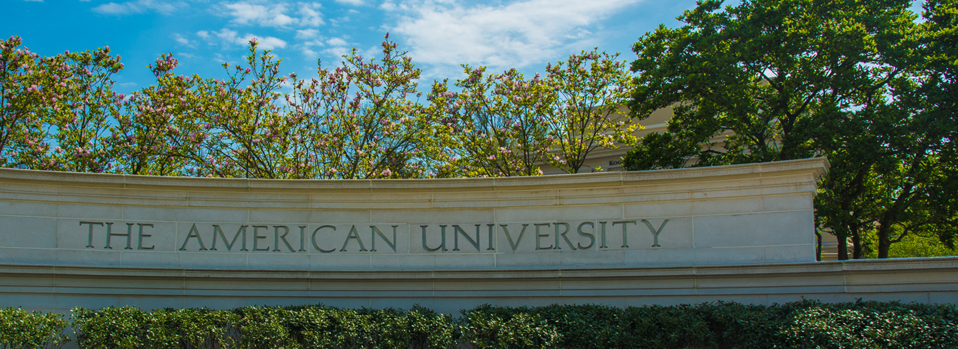 Main Gate of American University