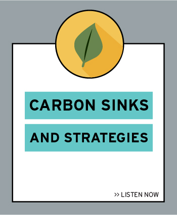 Episode 1: Carbon Sinks and Strategies