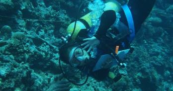 Lia Cheek diving to monitor coral reef in the Philippines.