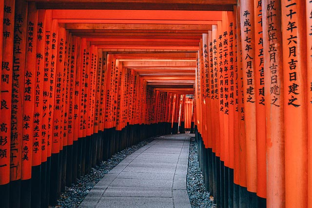 a walkway through a tunnel of torii gates, which mark the approach to a Japanese shrine