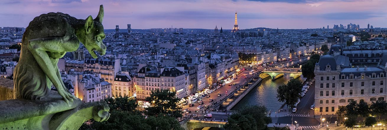 gargoyle overlooking the city of Paris at night with the Seine River and Eiffel Tower lit up