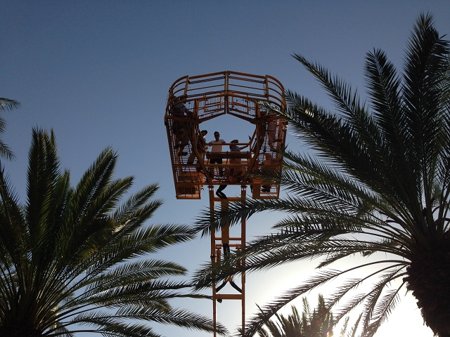 Students lifted in a crane among palm trees and a blue sky in Israel