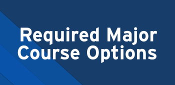 Required major course options