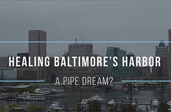 Healing Baltimore's Harbor: A Pipe Dream?