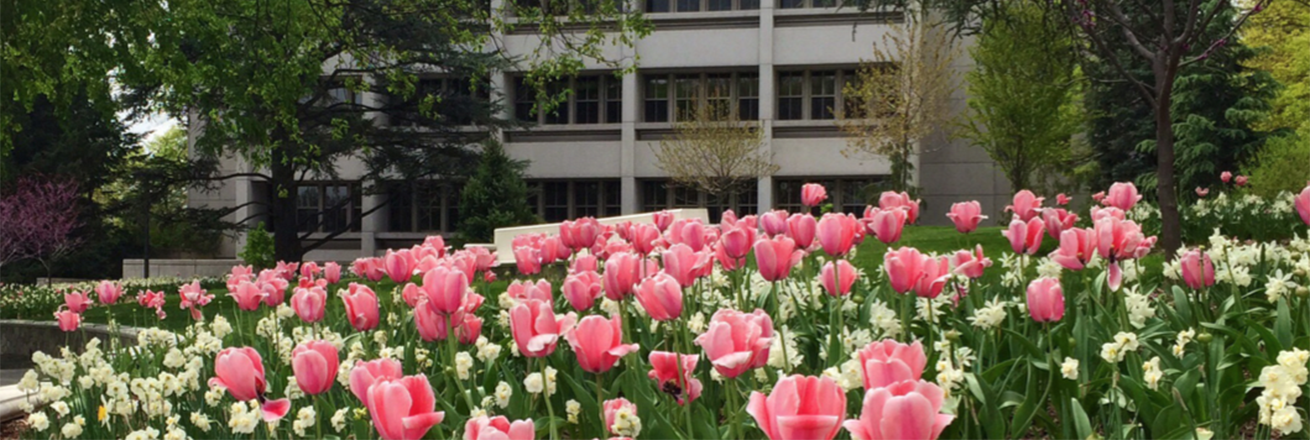 Flowers bloom outside of the Ward Circle Building