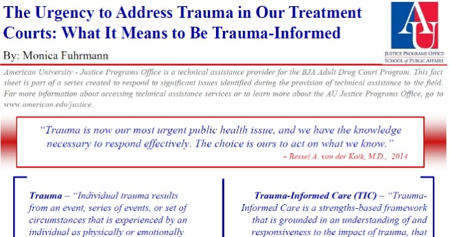 Trauma Informed Care Fact Sheet Screenshot for Slider Gallery