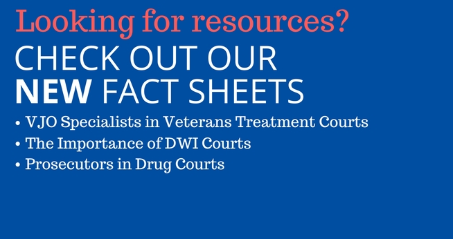 Check out our new fact sheets on VJO Specialists, DWI Courts, and Prosecutors in Drug Courts.