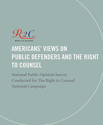 National Public Opinion Survey cover