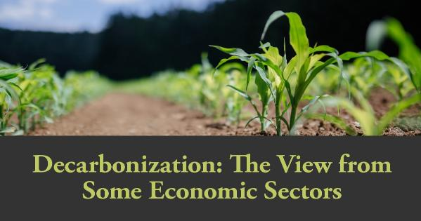 Decarbonization: The View from Some Economic Sectors