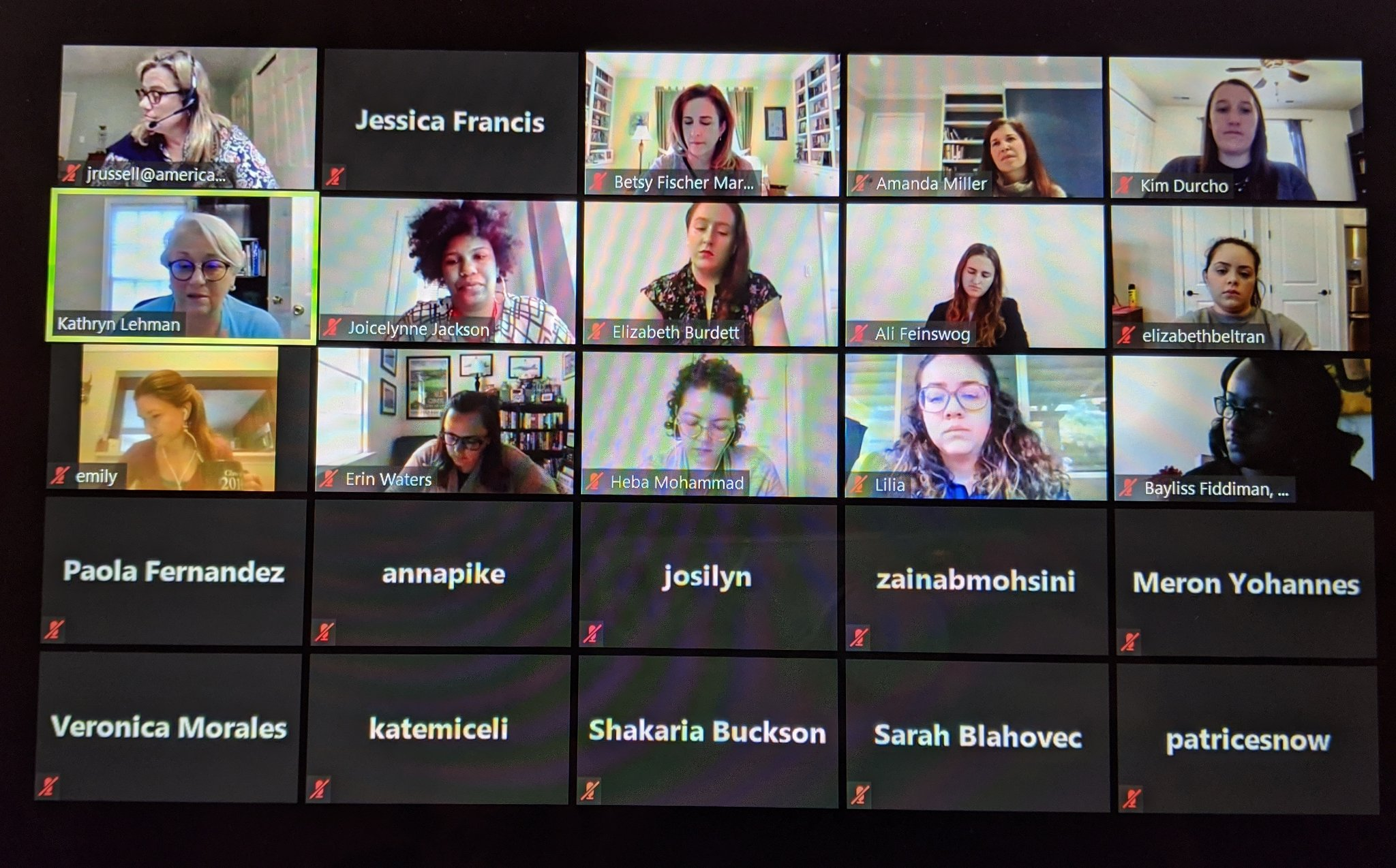 Virtual WeLead session in Zoom gallery view
