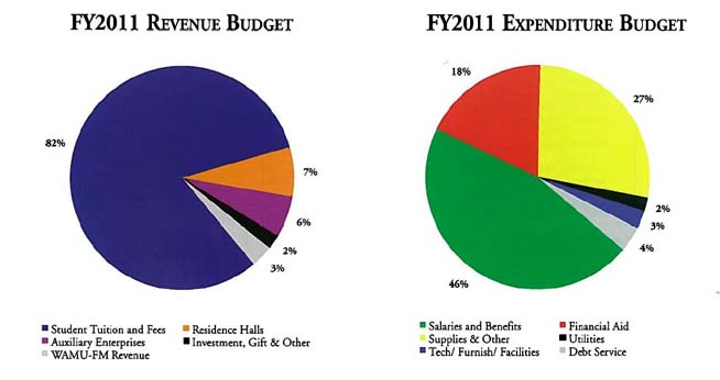 FY2011 Revenue and Expenditure Budget