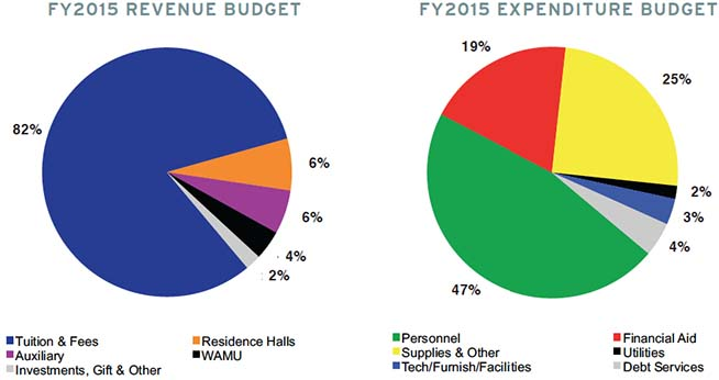 FY2015 Revenue and Expenditure Budget