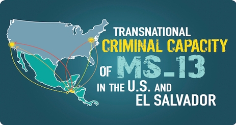 Transnational Criminal Capacity Of MS In The US And El - M13 gang us map