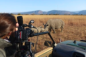 In his new book, SOC professor Chris Palmer draws on his experiences as a wildlife film producer. Photo: Vanina Harel.