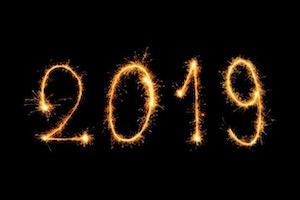 The year 2019