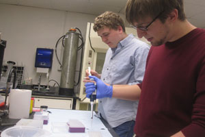 Clint Rice (left) and Andrew Frank (right) conduct research in the laboratory.