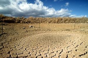 Drought Affected Landscape